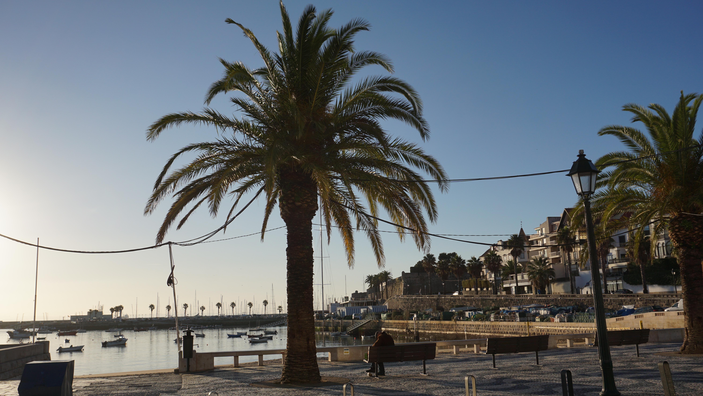 Excursie de o zi din Lisabona Cascais